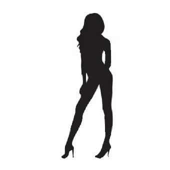 SG VIP logo